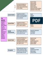 Mapa Tipos de Agnosias .pdf