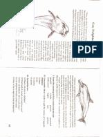 Adobe Scan 02 dec. 2020.pdf