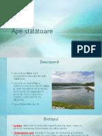 ape_statatoare_proiect_biologie