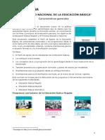 Currículo Nacional y Sus Modificaciones Programas Curriculares Por Nivel