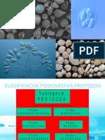 Predavanje 02 Protozoa 2