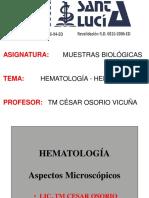 HEMATO ENF IV HEMOGRAMA