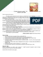 teza VB SEM II 2017-2018.docx