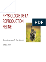 PHYSIOLOGIE DE LA REPRODUCTION FELINE I