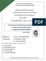 Etat actuel de l'utilisation d - ALAOUI MHAMMEDI Ayyoub_2863