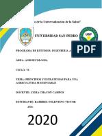 Ramirez Tolentino Victor Franshescoly-TEMA 9 -principios y estrategias