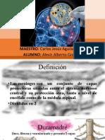 MeningitisEncefalitisAlexisGomez