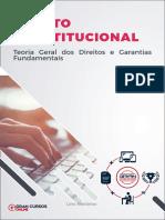 16775685-teoria-geral-dos-direitos-e-garantias-fundamentais.pdf
