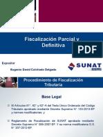 Fiscalización+Parcial+y+Definitiva_DAVID COLCHADO