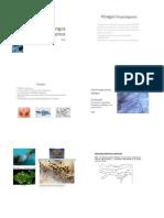 Hongos fitopatogenos enca_2020 parte 1  PUBLICAR