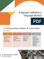 Lenguaje técnico y lenguaje ordinario