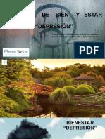 Ppt Manejo de depresión