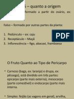 FRUTOS - Intrudução