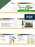 botany  tissues.pdf