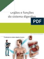 Modulo 6 - Sistema Digestivo
