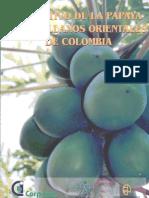 Cultivo de la papaya