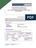 Guía de Producto Académico 2