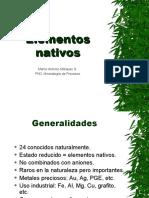 Clase 10. Estructura de los Elementos Nativos
