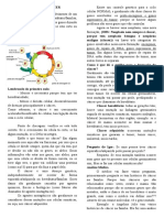Genética e Câncer.docx