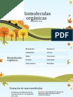 Biomoleculas.