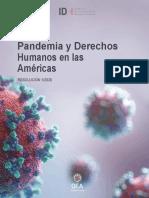 Pandemia y Derechos Humanos