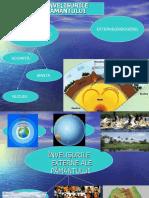 componente_hidrosferei.ppt
