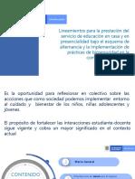 29 hojas  LINEAMIENTOS DEL M.E.N..pdf