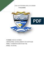 7. ENSAYO DE UML