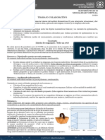 TC_MatematicasII_Optimizacion (2).pdf