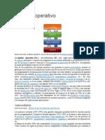 sistema operativo teoria 1.docx