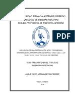 HERNÁNDEZ_JOSUÉ_FERTILIZACIÓN_ALLIUM CEPA_SIVAN.pdf