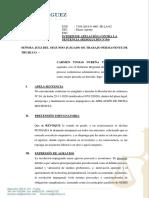 INTERPONE APELACIÓN carmen tomas nureña.pdf