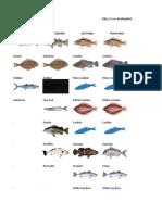 Fishing Calendar _ Calendario de Pesca