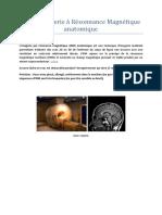 IRM-anatomique
