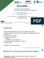 Restauracion_Medida_AbE.pdf
