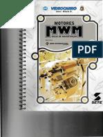 Motores MWM - Dicas de Manutenção.pdf