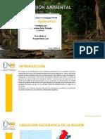 Etapa 3-Helena Soler-Problematica-del-Agua.pdf