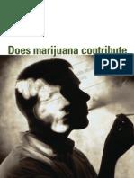 Does Marijuana Contribute to Psychotic Illness