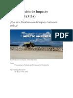 Manifestación de Impacto Ambiental,Articulo