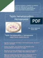 2 Hematopoyesis.ppsx