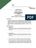 Modelo resumen ejecutivo - OCI