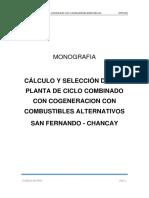 Monografia - San Fernando.pdf