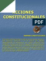 ACCIONES CONSTITUCIONALES .pdf