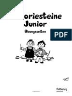 TheoriesteineJunior-Uebungsseiten.pdf