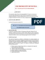 15.-IMPUESTO-DE-PROMOCIÓN-MUNICIPAL-Y-RODAJE