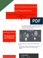 Project work Skytg24