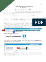 Manual do Documento externo
