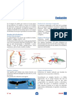 EVOLUCION I.pdf