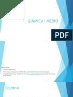 Guia_Quimic_IM_2sem