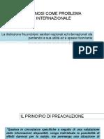Il Principio Di Precauzione_2013